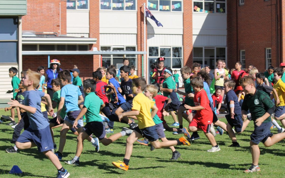 House Cross Country