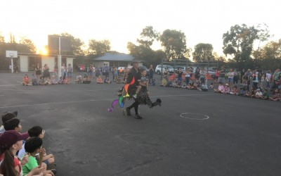 Amsleigh Park PS Bush Dance 2018